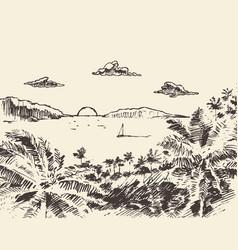 beautiful drawn vacation palm ocean sketch vector image vector image