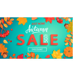 autumn sale banner in fall leaves frame vector image