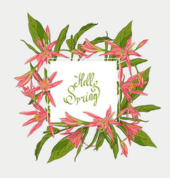 Flowers lilies square frame hello spring vector