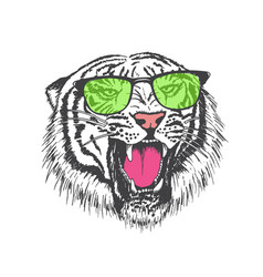 tiger in sunglasses vector image