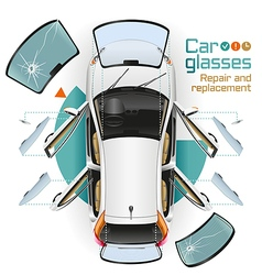 Car Glasses Repair and Replacement vector image