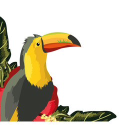 Exotic and tropical bird vector