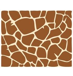 giraffe skin pattern vector image
