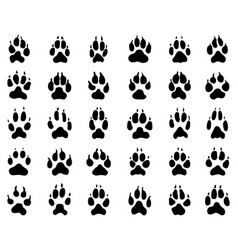 print dogs paws vector image