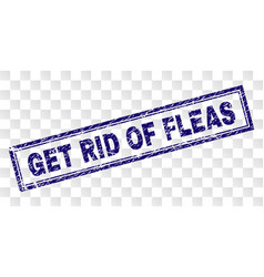 Scratched get rid fleas rectangle stamp vector