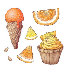 set of citrus ice cream and cupcake vector image