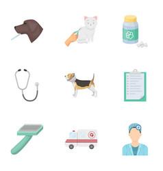 Vet clinic treatment of sick animals hospital vector