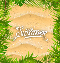natural frame with sandy texture and exotic leaves vector image