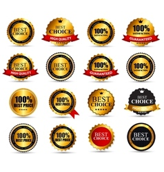 Best Choice Label Set vector image