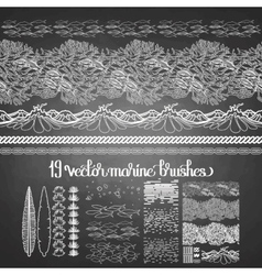 collection ocean brushes vector image