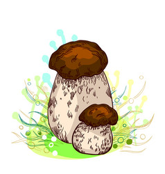 Porcini mushroom vector