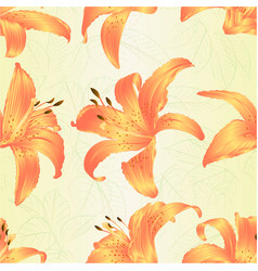 seamless texture lilium candidum a white flowers vector image