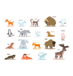 Set of arctic and antarctic animals fox wolf vector