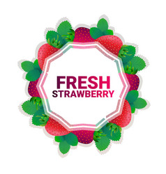 strawberry fruit colorful circle copy space vector image