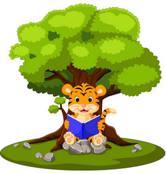 tiger reading book and sitting on the stone vector image