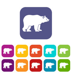 bear icons set vector image vector image