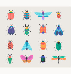 bugs insects butterfly ladybug set vector image