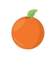 orange fruit food healthy vector image