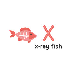 alphabet letter x and x-ray fish vector image