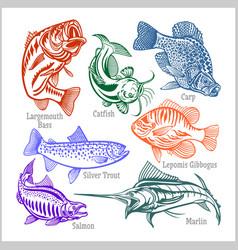 american fish - set for creative design t vector image