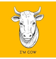 Cow head engraving style vector