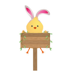 cute chicken cartoon vector image