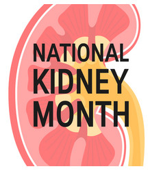 National kidney month concept in flat style vector
