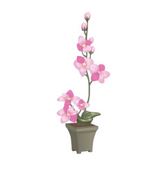 Pink orchid in flowerpot design concept in flat vector
