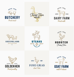 Premium quality retro cattle and poultry vector