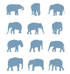 silhouettes elephants vector image