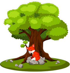 fox sitting on the stone vector image