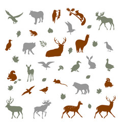 Animals living in european forest vector