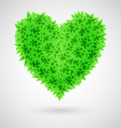 Heart leaf BIO Natural 01 vector image