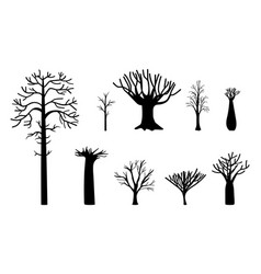 naked trees silhouette vector image
