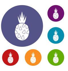 Pitaya dragon fruit icons set vector