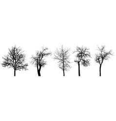 Bare trees chestnut tree apple tree cherry tree vector