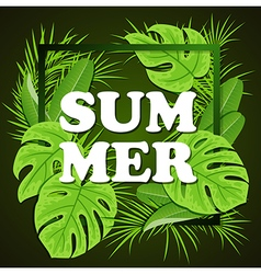 Green tropical leaves on a black background vector