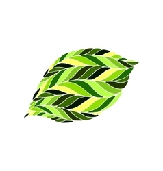 image of a leaf in shades green on white vector image