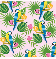 parrot with tropical watermelon and lemon vector image