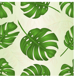 Seamless texture philodendron tropical jungle vector