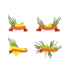 sukkot collection four symbols of Jewish holiday vector image