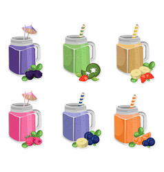 summer cocktail fruits set fresh drink vector image