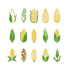 organic corn icons isolated on white vector image