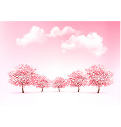 beautiful spring nature background with trees vector image