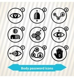 Body password icons vector image
