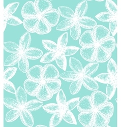 Floral background with frangipani vector