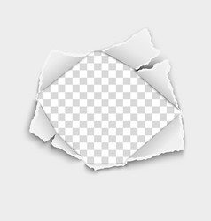 ripped hole in white paper with torn edges vector image