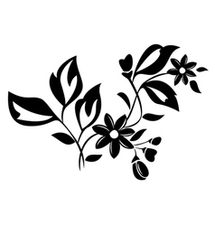 black herbal element for design vector image vector image