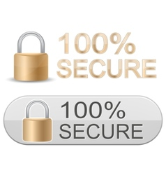 ssl certificates signs for website vector image vector image