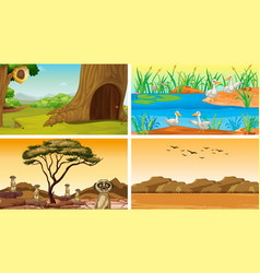 Four scenes with animals in park vector